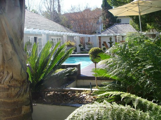 Touch of Class Guest House: The lovely garden and pool