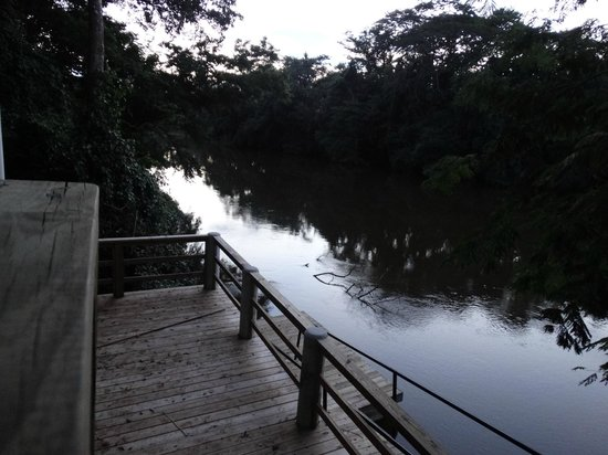 Black Orchid Resort: River Platform and Viewing Area
