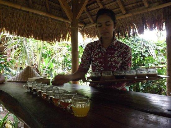 Teba Sari Bali Agrotourism: Cafe y te.