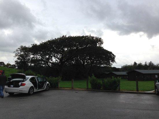 Parkdean - White Acres Holiday Park: Car Parking