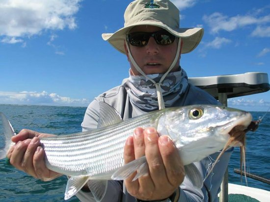 Belize sport fishing charters dangriga top tips before for Sport fishing charters