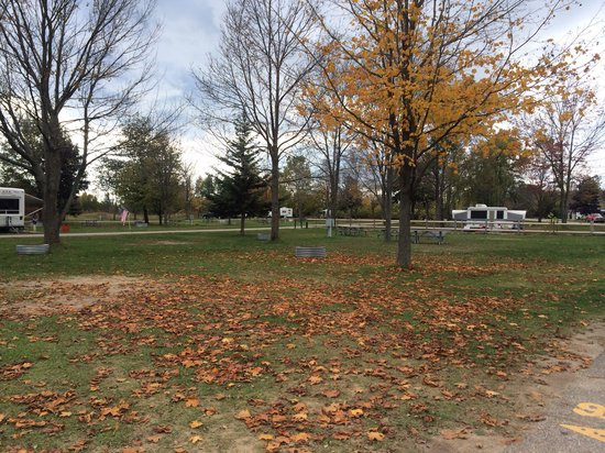 Tawas Point State Park: Somewhat empty campground