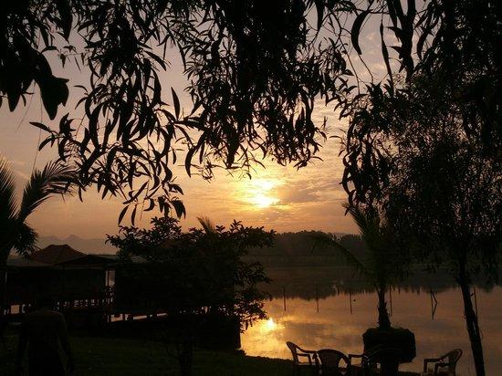 Pooja Farms: Scenic view