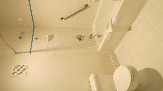 Shilo Inn Suites Mammoth Lakes : Bathroom