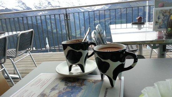 Berghotel Schynige Platte : Swiss Hot Chocolate in cow cups!   - Swiss Breakfast items  - Hotel Schynige Platte