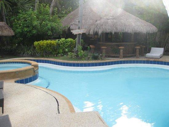 Polaris Beach and Dive Resort: Pool