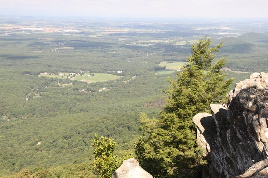 Raven's Roost Overlook: View for miles