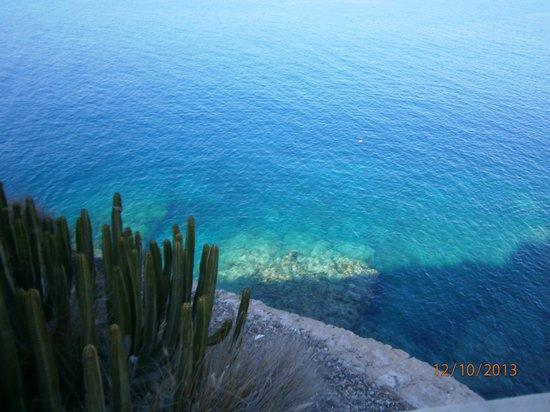 Miriam Apartments : vista dal paseo por playa amadores
