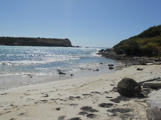 Grand Bahi­a Ocean View Hotel : Playa Sucia