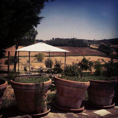 Agriturismo Cetine Vecchie: Jedna z altanek