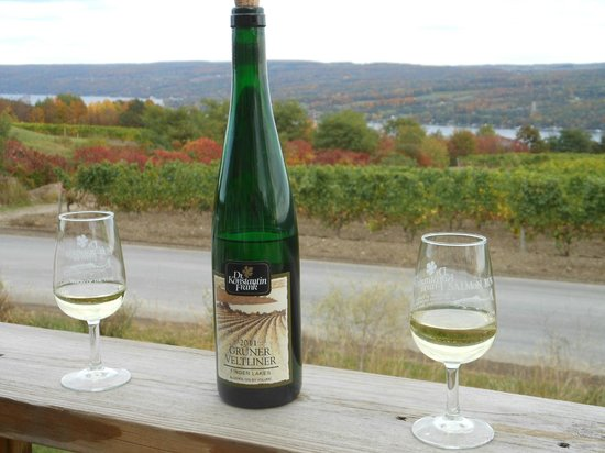 Dr. Konstantin Frank's Vinifera Wine Cellars: Looking over Keuka Lake