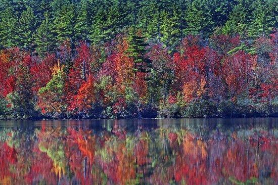 reflections on Lake Chocorua