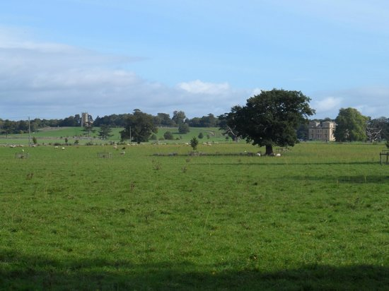 Croome: The view from across the Park where Capability Brown did his watercolour painting