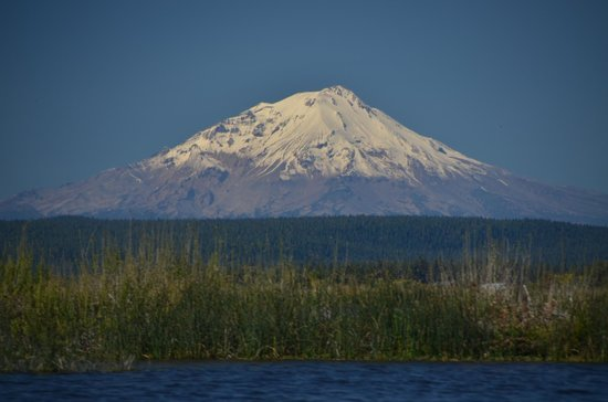 Clearwater Lodge at the Pit River: Mount Shasta provides an incredible backdrop to a day of fishing on the Fall River