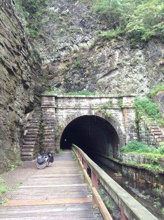 C&O Canal - Paw Paw Tunnel : Paw Paw Tunnel southern portal