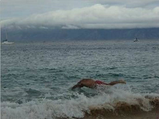 Royal Lahaina Resort: Diving into the ocean
