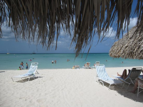 Marriott's Aruba Ocean Club: Beach