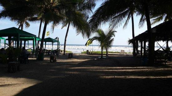 El Cuco, El Salvador: La Tortuga Verde