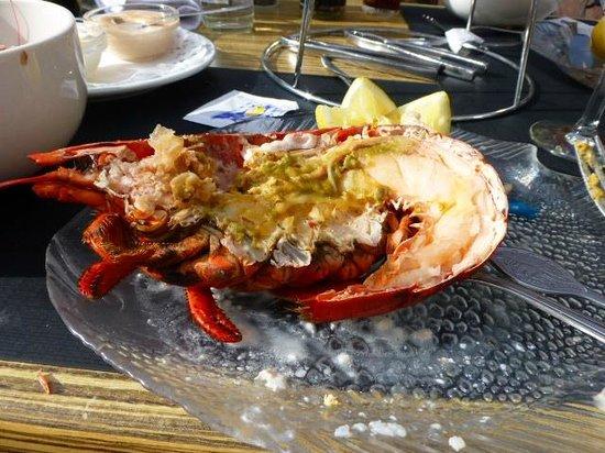 Den Gouden Karpel: One half lobster for each
