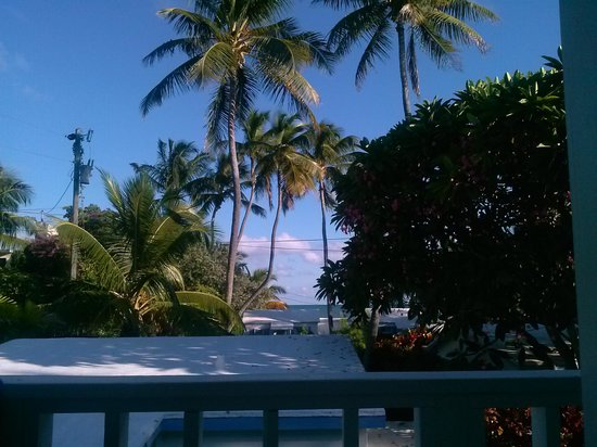 Pines and Palms Resort: afternoon view