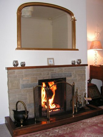 Green Acres & Cherry Blossom Cottage: The most welcoming and warming open fire