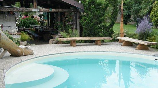 B&B Bamboo House: piscina