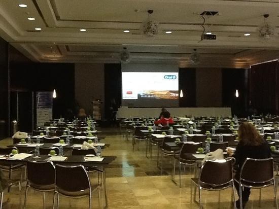 Occidental Aranjuez: sala de conferencias
