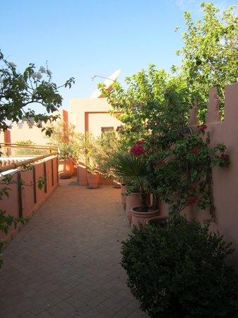 Dar Amanza: La terrasse sur le toit
