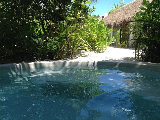 The Beach Tulum: pool
