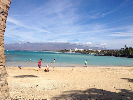 Mauna Lani Point: Lots of sandy beach and shady areas under trees!