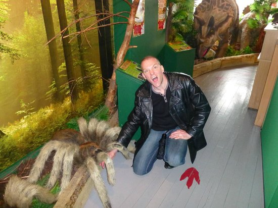 Torquays Dinosaur World: hubby being eaten by huge spider