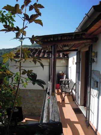 Agriturismo Barbicaio: Terrace of La Cascia (spot the cat...)
