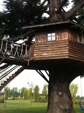 Antica Corte La Valle: Casa sull'albero