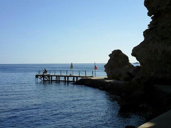 Dreams Beach Resort: reef