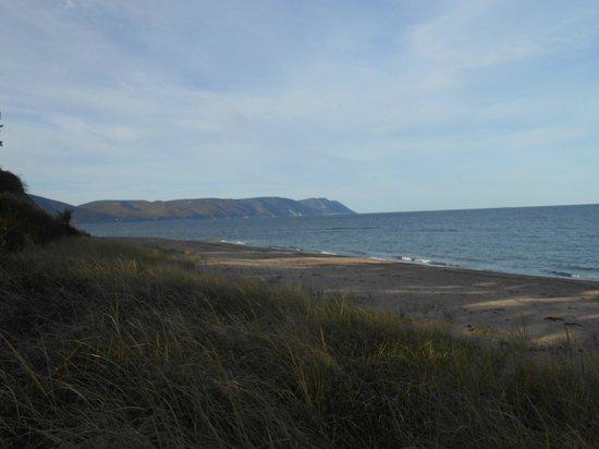 The Markland Coastal Beach Cottages : Beach