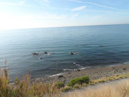 Holiday Village: beach not far away