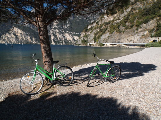 Hotel Brione: Our hire bikes