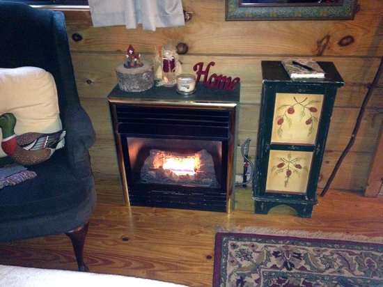 Arbor Cabins at Lake Lure: This makes the room toasty!