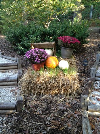Arbor Cabins at Lake Lure: fall decorations