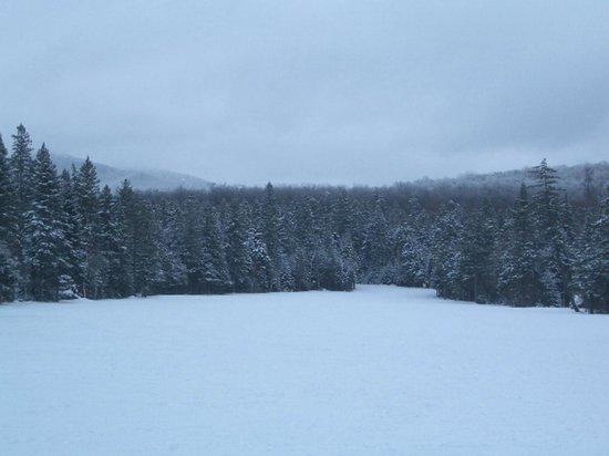Mount Van Hoevenberg : Open area