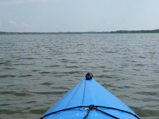 Kayak Hilton Head, Inc.: View from the pilot's seat