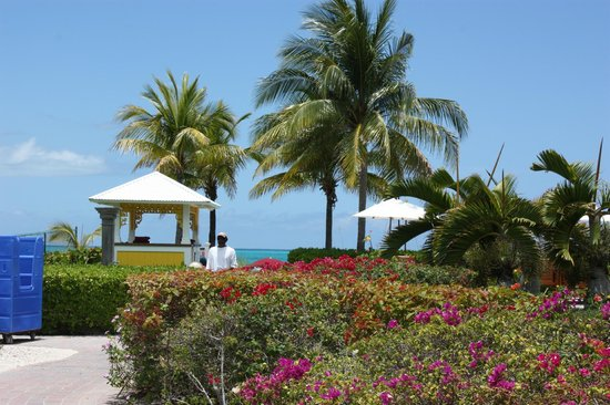 Royal West Indies Resort: Walk to the beach
