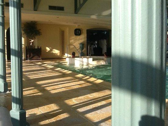 Georges Blanc Parc & Spa : piscine
