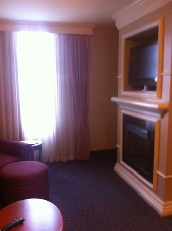 Hilton Garden Inn West Edmonton : Can lounge on the couch in living room