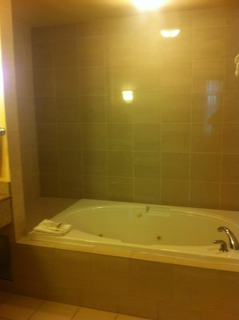 Hilton Garden Inn West Edmonton : Can relax in the whirlpool tub