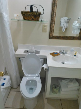 Best Western Plus Grand Strand Inn & Suites: View of Bathroom