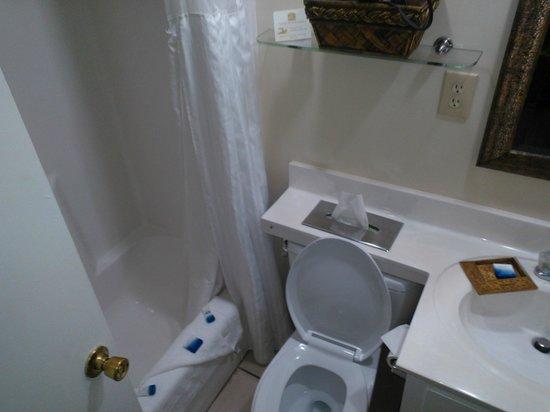 Best Western Plus Grand Strand Inn & Suites: View of Bathroom