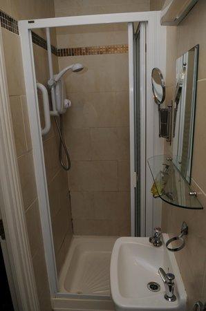 Annandale Bed & Breakfast: Bathroom