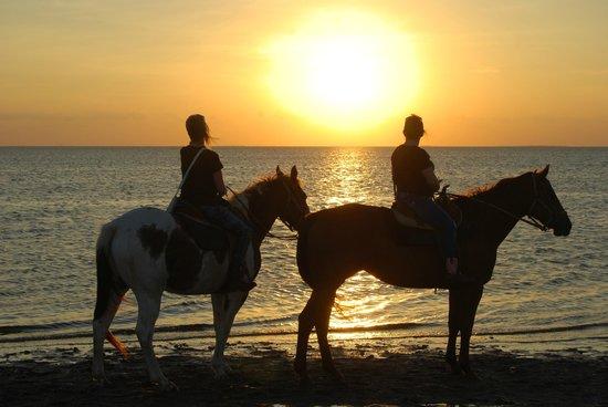 South Padre Island Adventure Park: Sunset