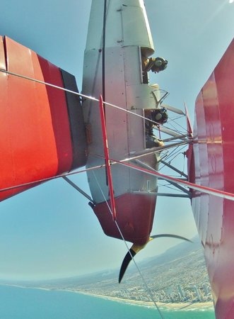 Tiger Moth Joy Rides: Flying Vertical over